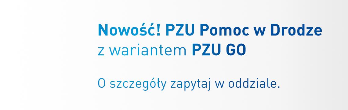 Agentpzu.pl